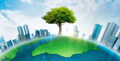El-impacto-de-la-regulación-ambiental-sobre-el-sector-energético