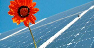 Amazon anuncia la puesta en marcha de su primera granja solar en España
